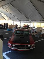 Charlotte Mustang 50th (03)